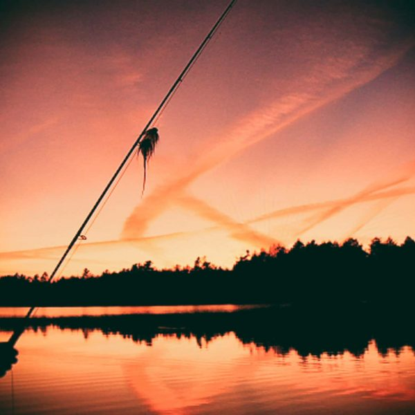 Minnesota and Wisconsin Fly Fishing Musky Trips